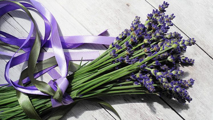 Tips for Buying the Best Fresh Cut Flowers