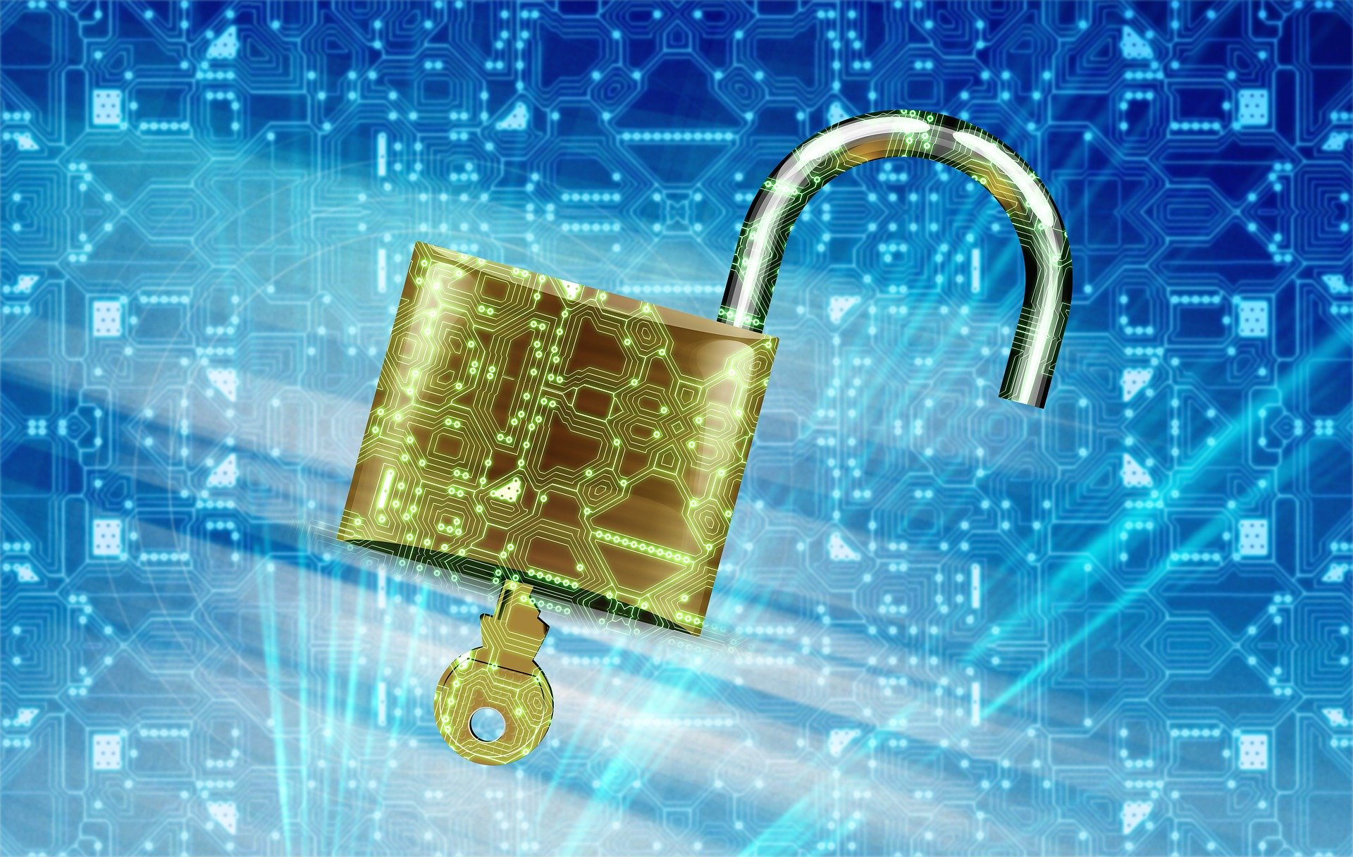 Improve Your Company's Data Security